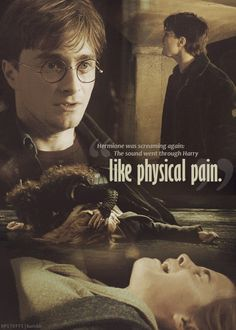 Hermione's pain. I wish they'd really portrayed how much agony ron and harry were in while this was happening