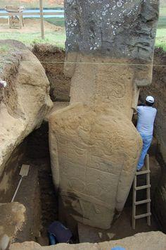 Los cuerpos de los  Moais gigantes en la Isla de Pascua