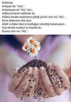 Muhammed Sav, Allah, Daisy, Floral, Karma, Margaritas, Quotes, Margarita Flower, Flowers