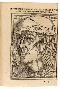Dryander. Among the first anatomists to make illustrations based on their own dissections.    Descriptive Title: Dissection of the head, showing layers of the scalp and meninges.  Technique: woodcut.  Anatomiæ... / 1537 (https://pinterest.com/pin/287386019948866886).