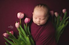 Spring bebe Newborn Monthly Photos, New Baby Photos, Newborn Pictures, Girl Photography, Children Photography, Newborn Photography, Spring Pictures, Baby Portraits, Newborn Photo Props
