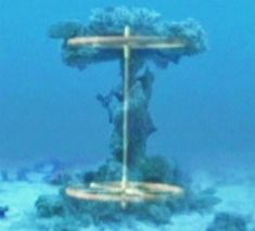 """A news report that stunned the world nine years ago about the discovery of possible ancient chariot wheels at the bottom of the Red Sea is suddenly gaining fresh attention with new video claiming """"irrefutable evidence"""" that corroborates the find. In June 2003, WND interviewed Bible enthusiasts who dove the waters of the Red Sea, […]"""