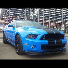 Ford Mustang Shelby GT500. Baby blue & black