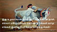 Tamil pongal wishes Pongal Wishes In Tamil, Happy Pongal Wishes, Tamil Greetings, Pongal Celebration, Celebration Images, Wish Quotes, Funny Quotes, Pongal Images, Cute Baby Boy Images