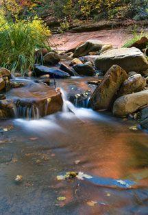 West Fork Oak Creek in Sedona..