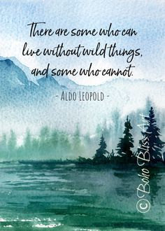 art quotes Aldo Leopold Quote: There are some who can live in a world without wildness amp; some who cannot. Life Quotes Love, Peace Quotes, Great Quotes, Inspirational Quotes, Time Quotes, Hiking Quotes, Travel Quotes, Aldo Leopold Quotes, Logo Branding