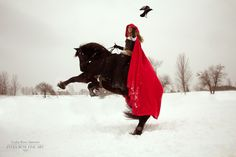 Raven flight...riding Douwe, my amazing Friesian. Photo taken by equine artist Lydia Rose Spencer. #redridinghood #redcape #medievalcostume #rearinghorse #SandraBeaulieu #beginthedance www.beginthedance.com