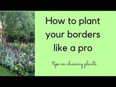How to plant a border like a pro - The Middle-Sized Garden | Gardening Blog