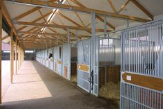 Open stables, Germany
