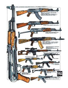 The AK 47 Family