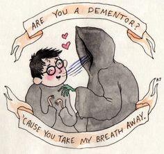 Harry pedreiro