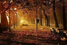 #Repost @__nataliavictoria with @repostapp  Una hermosa foto otoñal de nuestro Parque Forestal - - A beautiful autumn picture in Parque Forestal - - #VisitSantiago - - #InstaChile #Scl #Santiaguista #Santiago #Travel #Traveling #Traveler #Sudamerica #Travelingram #instatravel #Latinoamerica #VisitChile #Chile #Autumn #Chilegram #Otoño #Santiagodechile #Americalatina #Chiletravel #leaves #fore #Park #parqueforestal #instachile Capturado por visitsantiago