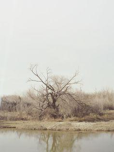 Sample pictures - Heikki Kaski
