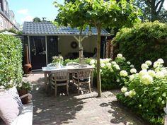 Tuin met dakplatanen, annabellen en schuur met overkapping www.vrielinktuinlink.nl