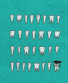 Wisdom Teeth #cheap #dental #service #wisdom #dental #smile #teeth
