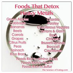 Foods That Detox Heavy Metals for reducing sensitivity to electromagnetic radiation beside the other health improving effects! Heavy metals, such as mercury, lead and aluminium, accumulate in the body over time and are suspected of triggering dangerous conditions like heart disease, thyroid problems, dementia, neurological conditions, autism, infertility and birth defects. The good news is that a heavy metal detox food can remove these contaminants from your body over a period of time.