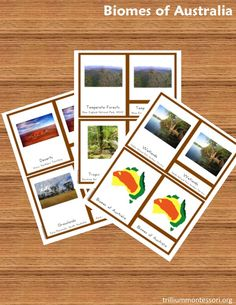 Free Biomes of Australia 3-Part Cards- instant download for blog subscribers
