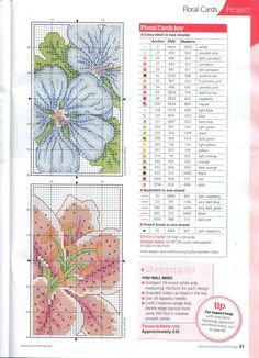 flores em pormenor 2