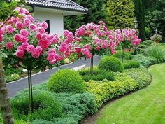 48 Fresh And Beautiful Front Yard Landscaping Ideas - Alles für den Garten Acreage Landscaping, Front Yard Landscaping, Landscaping Ideas, Outdoor Landscaping, Shade Landscaping, Backyard Ideas, Small Gardens, Outdoor Gardens, Amazing Gardens