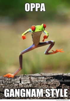 Oppa Frognam Style. - Click image to find more Animals Pinterest pins
