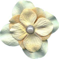OI_SwtForgetmenots_Flower08.png