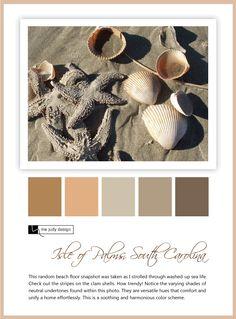 beach-floor-isle-of-palsm-sc