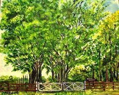 GALERIA PALOMO MARIA LUISA: ROCIO ANAHI Vineyard, Outdoor, Scenery, Outdoors, Vine Yard, Vineyard Vines, Outdoor Games, The Great Outdoors