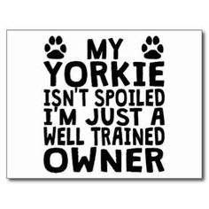 Just to start off your day right! Happy Monday everyone! #Yorkie #Quotes #Funny  http://ift.tt/1MZLWNI