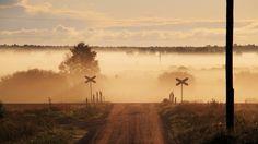 fog image for large desktop, 333 kB - Gregson Williams