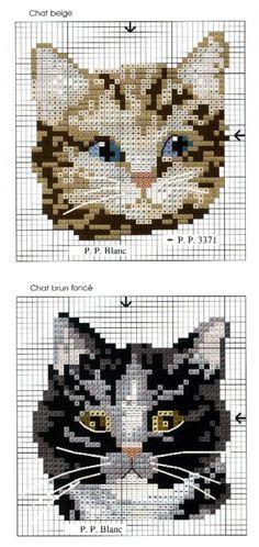 Gallery.ru / Фото #13 - DFEA HS 23 CATS. - Olechka54