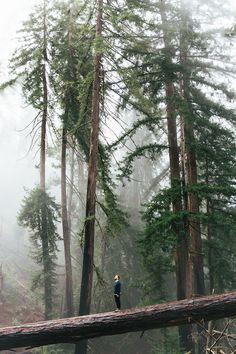 Big Sur, California by LauraJayneAustin