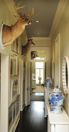 Mounted deer heads and Chinese 19th century porcelain jars