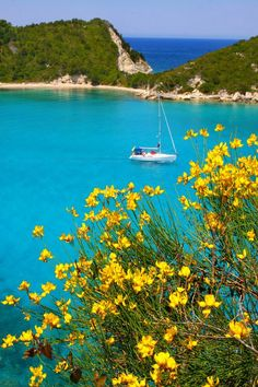 Cove with turquoise water and yellow broom in Lakka bay, Paxos Island, Yalos, Peloponnese Western Greece n de Ionian Island_ Greece Beautiful Islands, Beautiful Beaches, Beautiful World, Oh The Places You'll Go, Places To Travel, Places To Visit, Paxos Island, Myconos, Greek Islands