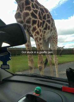 26 Snapchats That Will Make You Laugh Harder Than They Should