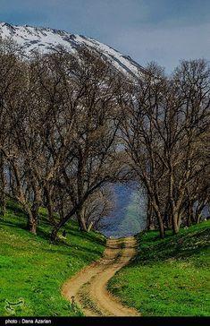 Gorgeous Path near the City Marivan in the Kurdistan Province of Iran.