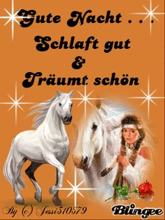 Good Night Sweet Dreams, Good Morning, Horses, Funny, Movie Posters, Animals, Movies, Good Nite Images, Good Morning Funny