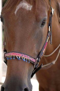 Nouveau Cheval Cob Poney BITZ Crochet Fly Veil Sans Oreilles Fly Frange Avec Blingy Beads