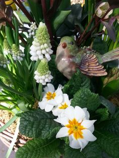 Spring planter with bird accent.