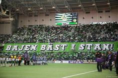 Hammarby IF Bajen World, Sports, Google, Pictures, Hs Sports, The World, Sport