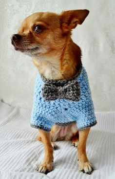 Crochet Dog Coat Pattern #freepattern Spanish site but with crochet diagram if translation doesn't work too well ♥♥♥ #freepattern #dogs
