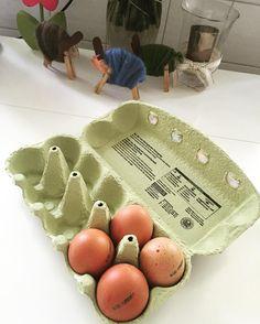 Um Zeit zu sparen koche ich immer zwei Packungen Eier vor. Da ich nicht auf frühstücken stehe ist es für mich die beste Lösung morgens gekochte Eier zu essen #lowcarb by lowcarbmonster