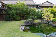 Japaninfo added 13 new photos to the album: ชมผลงานคุณป้าลายจุด Yayoi Kusama@Gion,Kyoto ~ 29 ตุลา — at 八坂倶楽部.