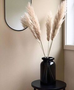 I like the contrast of the pale pampas grass with the dark v.-I like the contrast of the pale pampas grass with the dark vase. I like the contrast of the pale pampas grass with the dark vase. Decorative Accessories, Home Accessories, Round Glass Vase, Clear Glass, Water Glass, Grass Decor, Hm Home, Western Decor, Cheap Home Decor