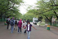 at Ueno Park, April 2013