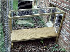 Outdoor Cat Enclosures: How To Go From Patio To Catio – Mai Meyers – Cat playground outdoor Dog Pen Outdoor, Outdoor Box, Outdoor Cats, Indoor Outdoor, Outdoor Decor, Diy Cat Enclosure, Outdoor Cat Enclosure, Patio Enclosures, Rabbit Enclosure