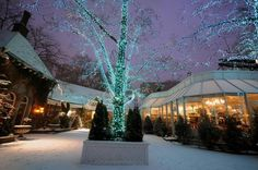 nyc tavern on the green christmas images - Bing Images