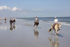 To ride along the water's edge on horseback.    Amelia Island, Florida