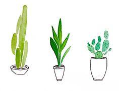 drawing Illustration life painting draw green live water watercolor colour color paint colorfull plants vida cactus plant acuarela desing flores pintura verde dibujo diseño planta plantas hojas flowes Dibujando pintando