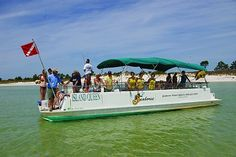 1000 images about charter fishing in florida on pinterest for Fishing charters mexico beach fl