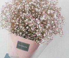 Garden Flowers - Annuals Or Perennials Gypsophila Paniculata Fresh Flowers, Dried Flowers, Beautiful Flowers, Wedding Bouquets, Wedding Flowers, Diy Inspiration, Gypsophila, Flower Aesthetic, Handmade Home